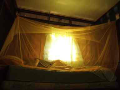 Le trou dans ma moustiquaire... Est-ce que je vous ai déjà dit que les moustiques m'adorent?