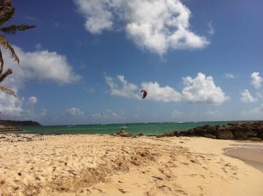 Troisième journée : aller-retour de l'hôtel au traversier et du traversier jusqu'à Capesterre-de-Marie-Galante histoire de zieuter les adeptes de kite surf pendant que je fais le plein de vitamine D – que 40 km, mais oh combien de plaisir!